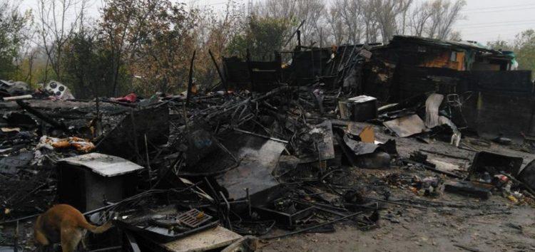 Požar u naselju Čukarička šuma u Beogradu